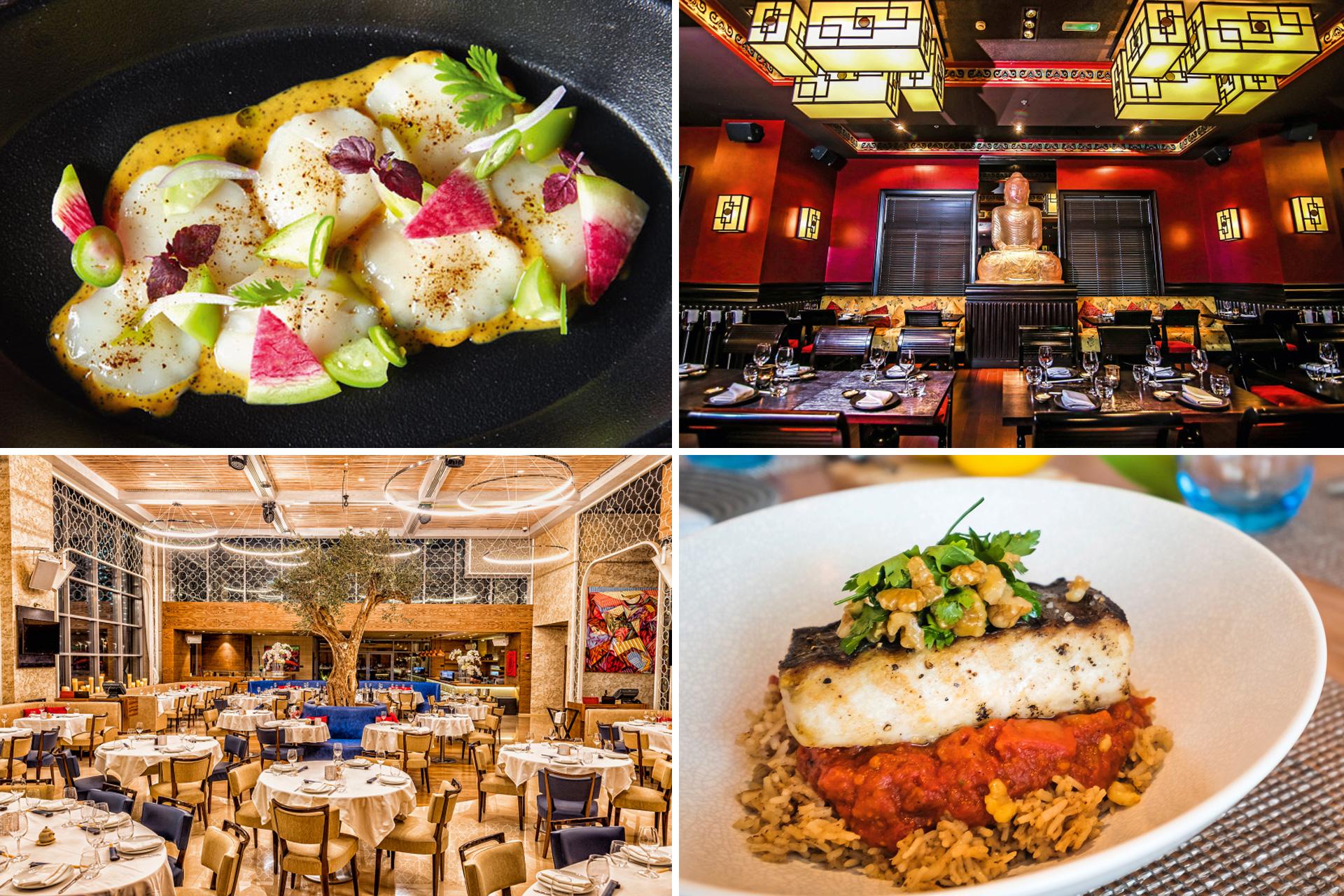 أفضل المطاعم التي ينصح في دبي المحلى