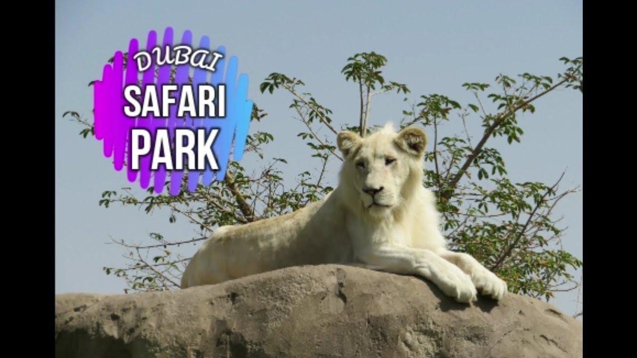حديقة سفاري دبي Dubai Safari Park