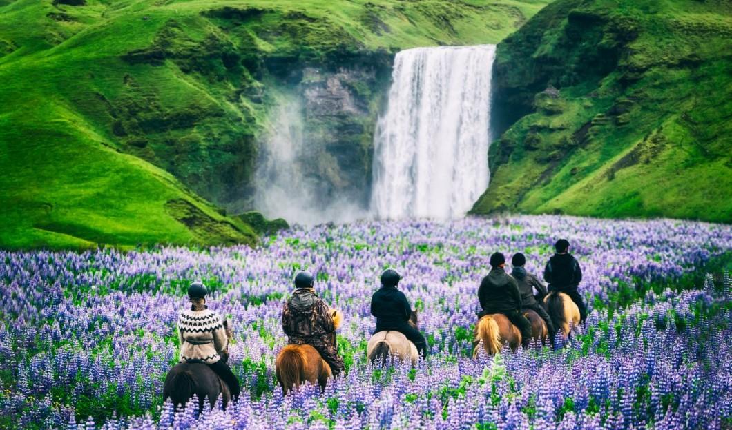 السياحة في أيسلندا: في مواجهة الصدمات