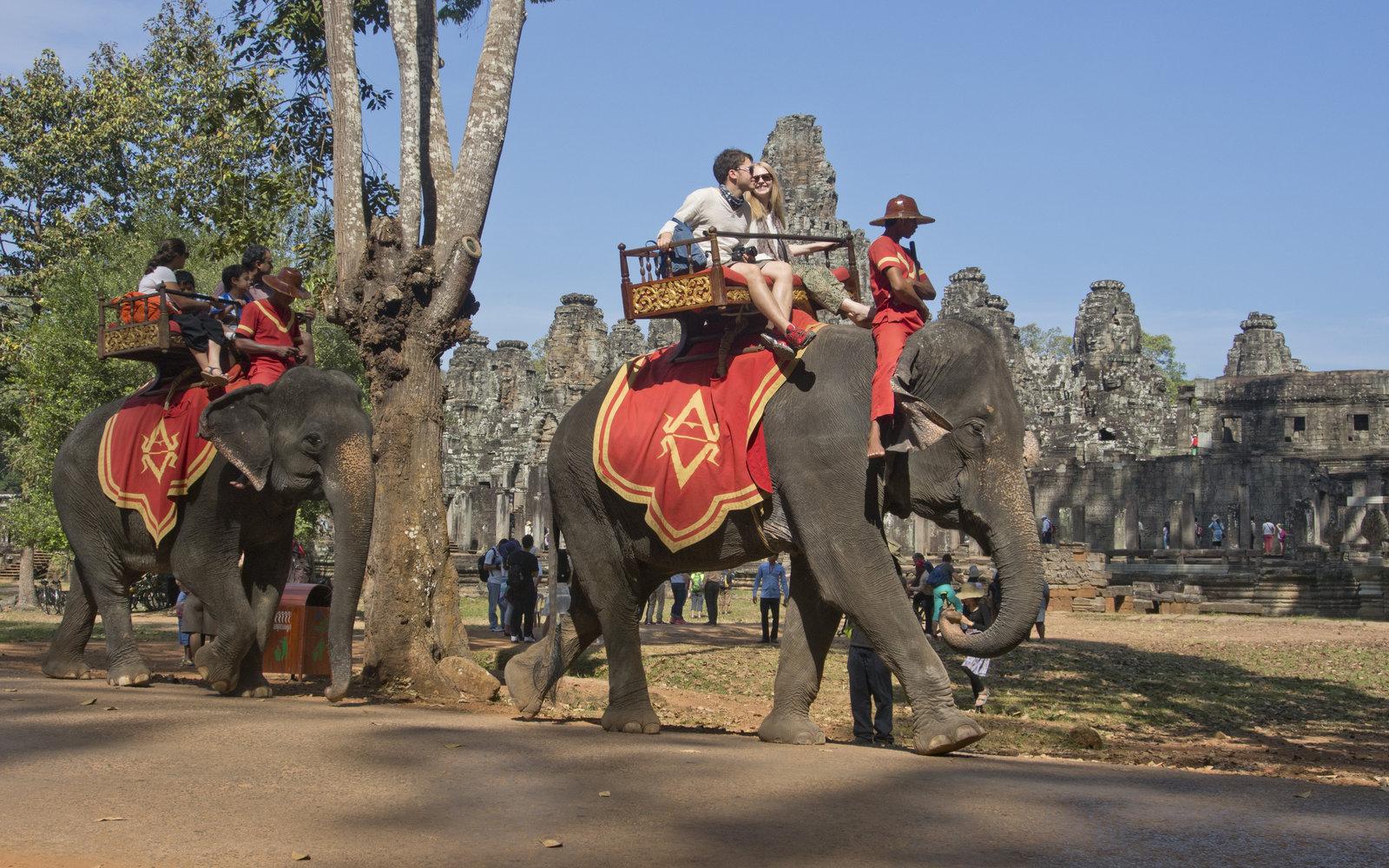 كمبوديا تحظر ركوب الفيل في معابد أنجكور