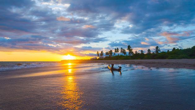 المرح العائلي على ساحل المحيط الهادئ في المكسيك