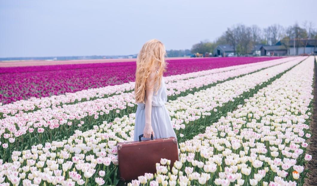 """مجلس السياحة الهولندي يستبدل صورة الخزامى وكلمة """"هولندا"""" بحرفي """"NL"""" مع كلمة الزنبق البرتقالي"""