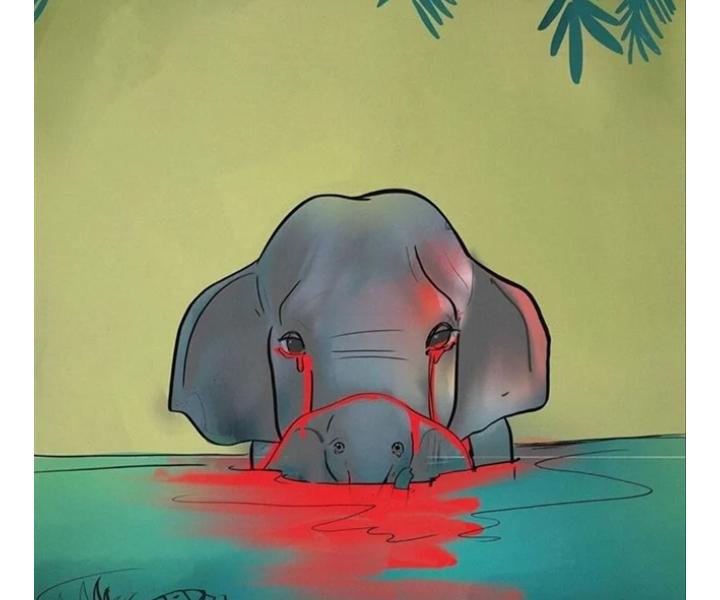 حادث قتل الفيل الهندى الذى مات فى الهند بابشع الطرق